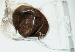 Tibetská houba v balení od dovozce
